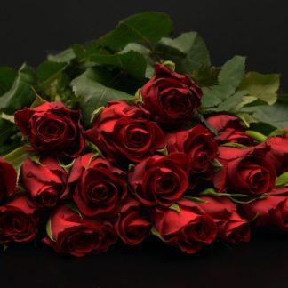 roosid 4